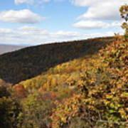 Peak Foliage Poster