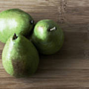 Pear Trio Muted Poster