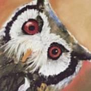 Peekaboo Owl Poster