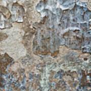 Peeling Wall. Poster