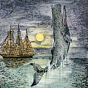 Pehe Nu-e: Moby Dick Poster