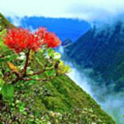 Peles Flower Poster