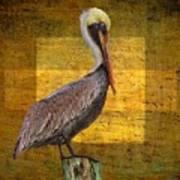 Pelican Poetry Poster