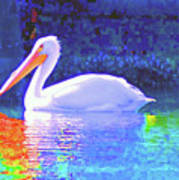 Pelican With Blue Poster