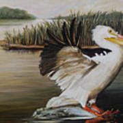 Pelicans At The Confluence Poster