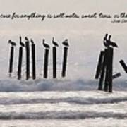 Pelicans Perched Quote Poster