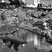 Pemaquid Point Lighthouse Maine Black And White Poster