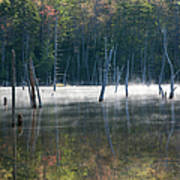 Pemigewasset Wilderness - White Mountains New Hampshire Usa Poster