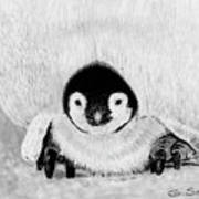 Penquin Chick Poster