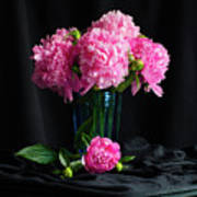 Peonies - Beauty The Brave Poster