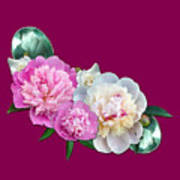 Peonies In Pink And Blue Poster