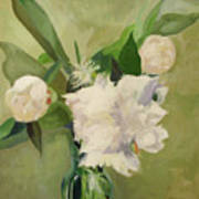 Peonies On Green Poster