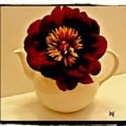Peony In A Tea Kettle Poster