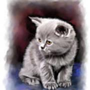 Pet Cat Portrait Poster