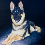 Pet Commission-shaka Poster