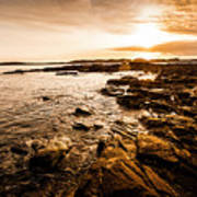 Petal Point Ocean Sunrise Poster