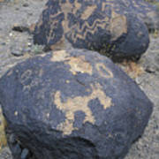 Petroglyphs By Hohokam People, Circa Poster