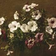 Petunias Poster by Ignace Henri Jean Fantin-Latour