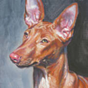 Pharaoh Hound Poster by Lee Ann Shepard