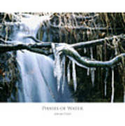 Phases Of Water Poster