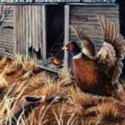 Pheasant Open House Poster