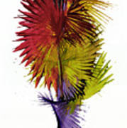 Phoenix Is Rising Series 1799.022414 Poster