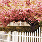 Picket Fence Charm Poster