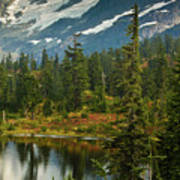 Picture Lake Vista Poster