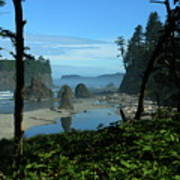 Picturesque Ruby Beach View Poster