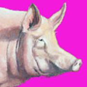 Pig Painting - Kitchen Art Poster