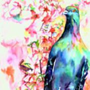 Pigeon Eye Poster by Christy  Freeman