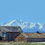Pikes Peak And Old Barn Spring Snow Poster