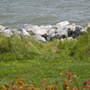 Pile Of Rocks On Shoreline Poster