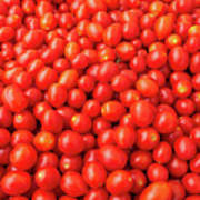 Pile Of Small Tomatos For Sale In Market Poster