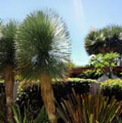 Pinball Plants, Long-pin Plants Poster