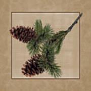 Pine Cone Design Poster