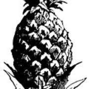 Pineapple Print Poster