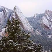 Pines And Flatirons Boulder Colorado Poster