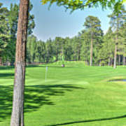 Pinetop Country Club - Hole #18 - Photos Poster