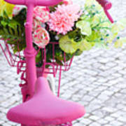 Pink Bike Poster