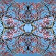 Pink Blossom Mandala Poster