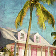 Pink House Palm Poster