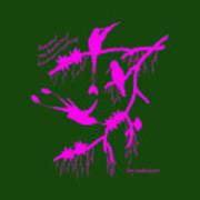 Pink Hummingbirds Poster