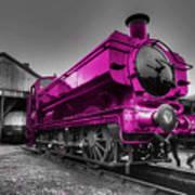 Pink Pannier  Poster