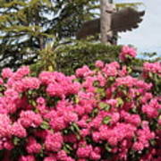 Pink Rhododendrons With Totem Pole Poster