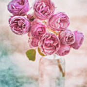 Pink Roses Beauty Poster