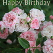Pink Roses Birthday Card Poster