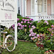 Pink Shop Cape May Poster