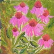 Pink Sunshine Poster