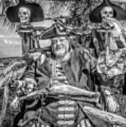 Pirate Captain And Parrots Black And White Poster